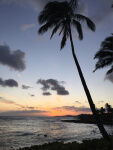 Sunrise at beach, Therapy for Chronic Illness, Miami, Fl