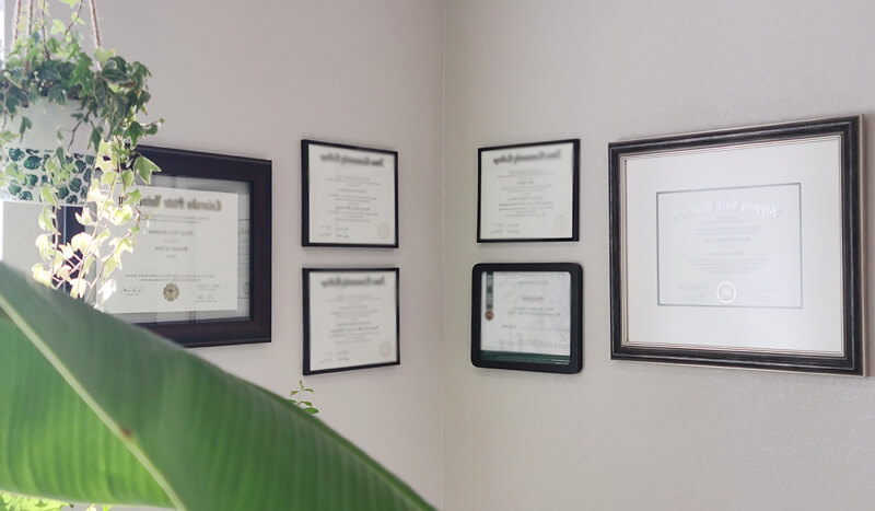 Diplomas on wall, Joyce Szentpaly's Expertise